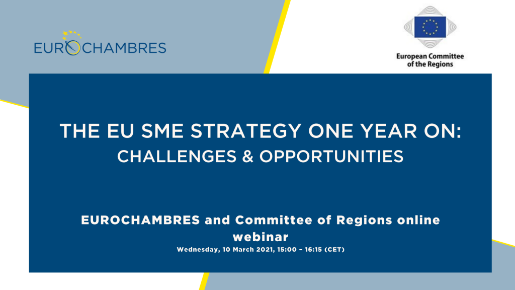 The EU SME strategy one year on: Challenges and Opportunities