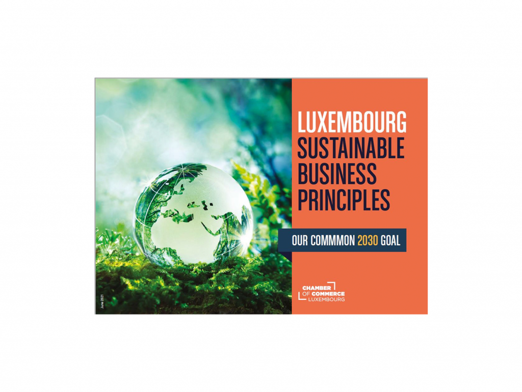 Luxembourg Sustainable Business Principles: Our Common 2030 Goal, together towards a sustainable future