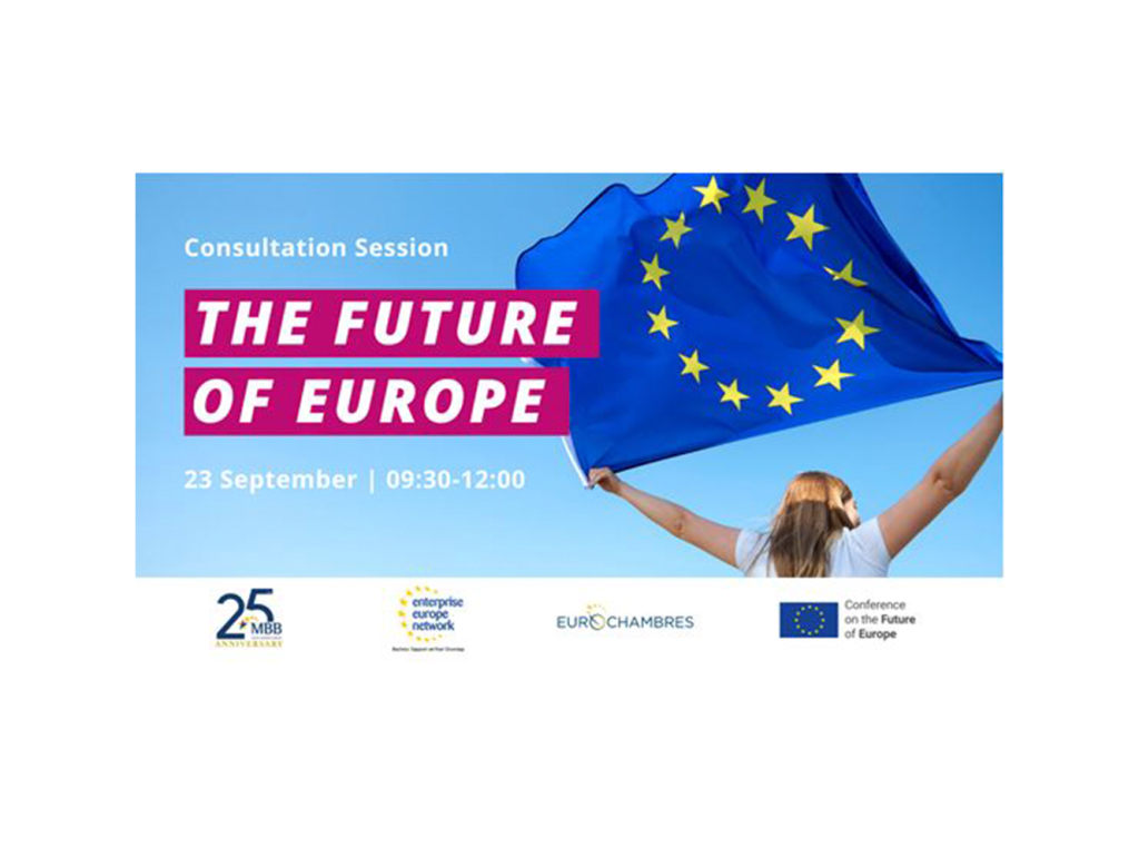 Malta Business Bureau Consultation on the Future of Europe Webinar